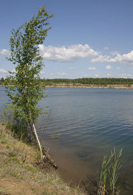 Малукса ленинградская область карьер рыбалка